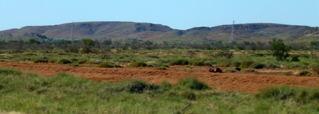 The view from the road south of Pardoo Roadhouse