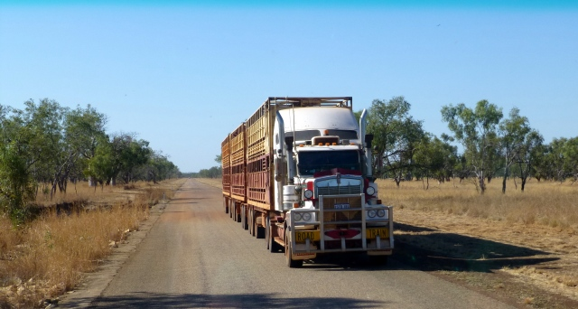 One of several road trains that passed the bus on the way to Windjana Gorge - this one on a sealed section of the Gibb River Road