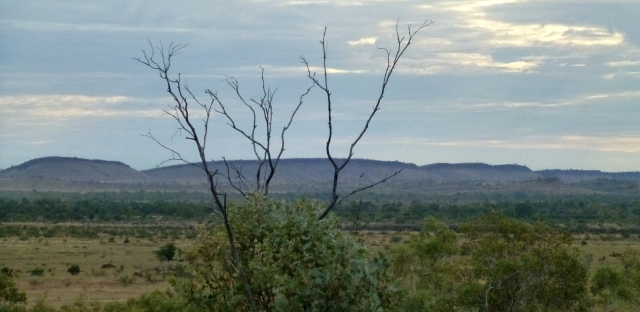 The view from the road between Mary Pool and Halls Creek