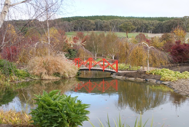 Part of the extensive Mayfield Gardens at Oberon