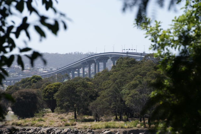 View of Tasman Bridge from Hobart Gardens