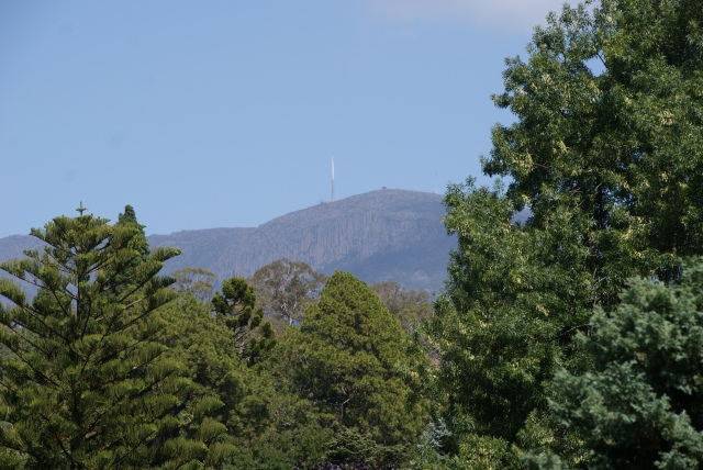 The Spire atop Mt Wellington as viewed from the Hobart Gardens