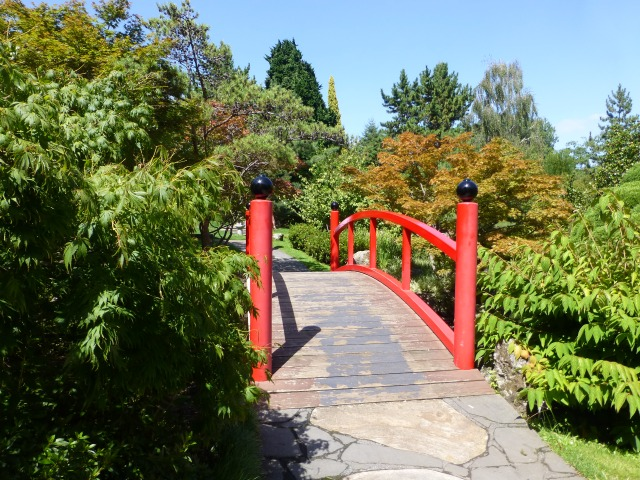 Bridge in the Japanese Garden section of the Hobart Gardens