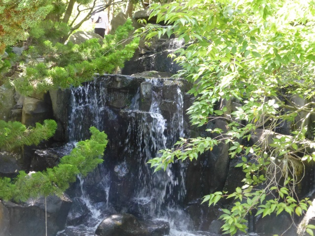 Water feature in the Japanese Garden at the Hobart Gardens