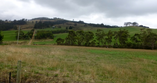 Rural View at Breams Creek
