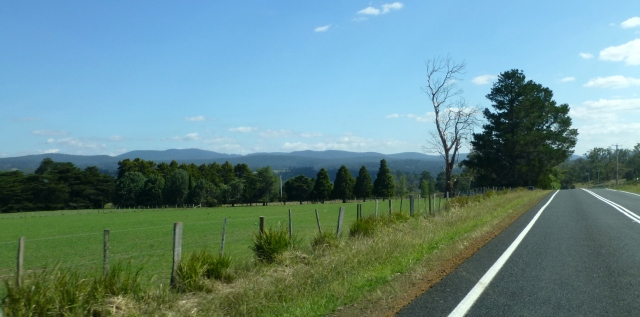 View along the Tasman Highway near Swansea