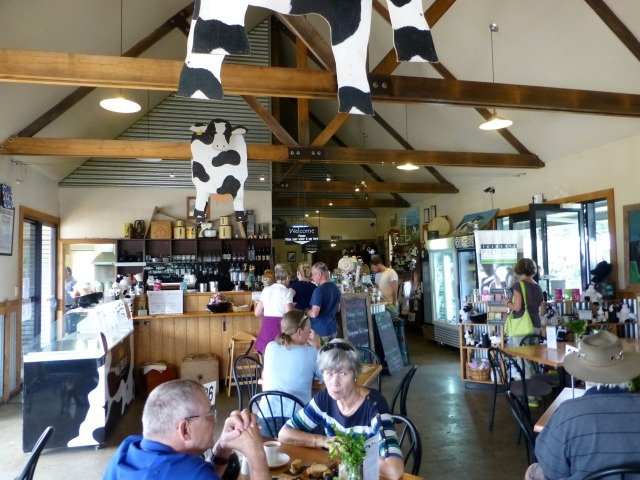 Inside the Holy Cow Cafe