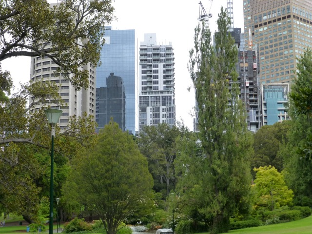 City view from Treasury Gardens Melbourne
