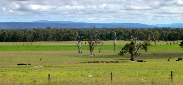 Picturesque scenery along the Princes Highway
